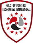 Budokanryu International