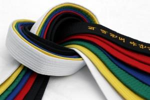 borilne veščine-barvni pasovi