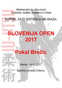 Mednarodni turnir - Pokal Brežic 2017